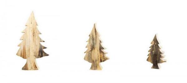 Holz Tannenbaum ohne Rinde